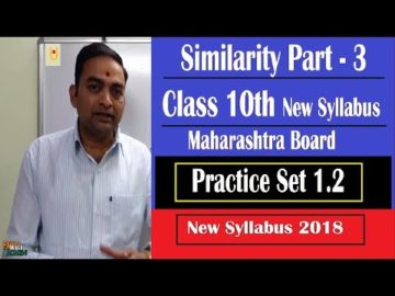 Similarity Class 10th Maharashtra Board New Syllabus Part 3 | Practice Set 1.2